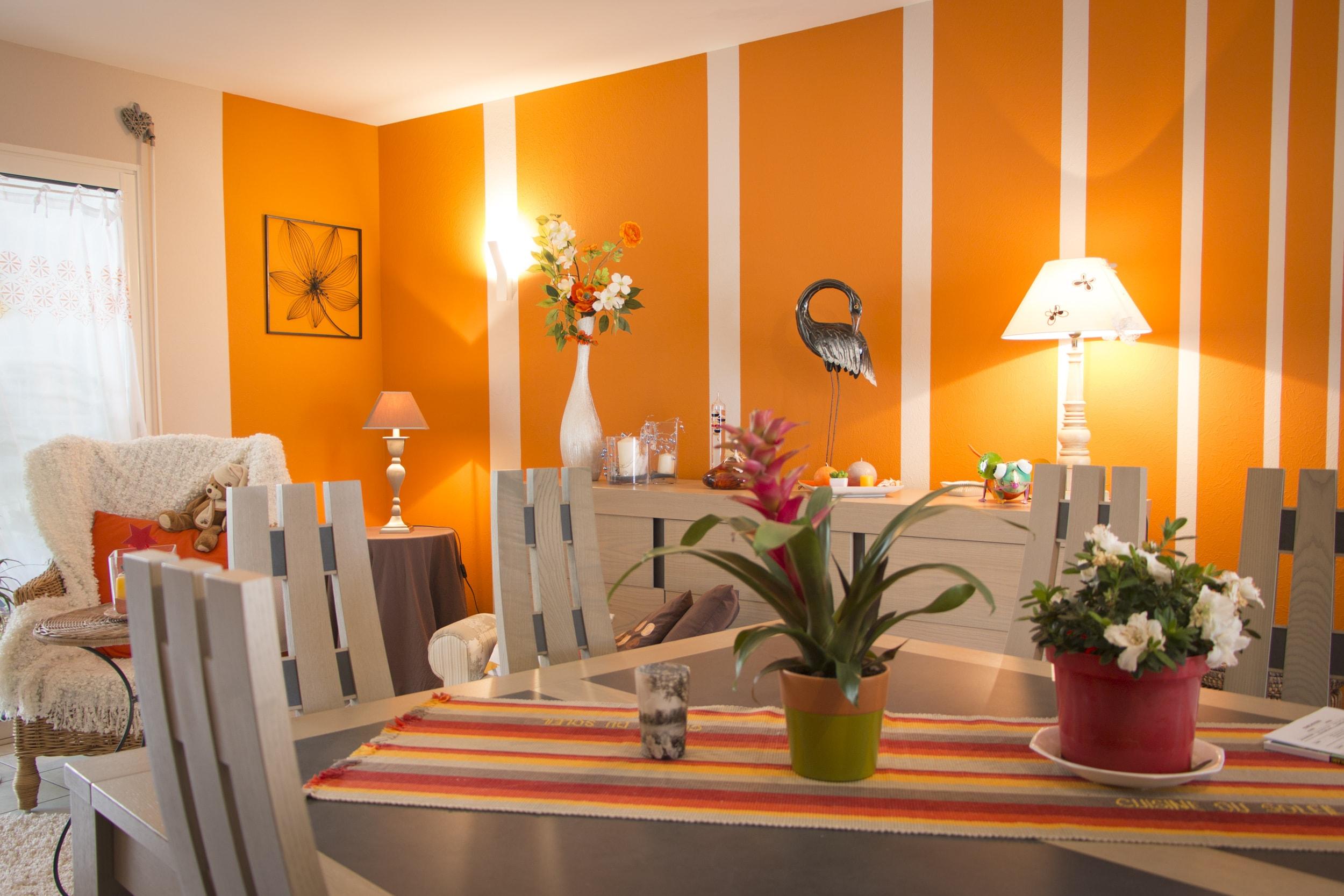 Maison Contemporaine Peintre Et Décoration à Poitiers Et Alentours